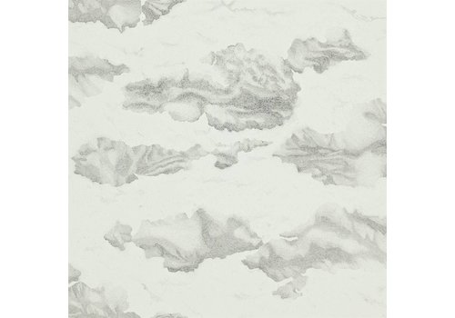 Harlequin Nuvola