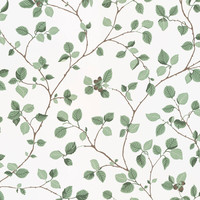 Sandberg - Hassel Green