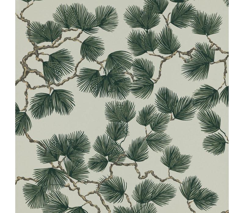 Sandberg - Pine
