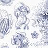 Naturalis Originals Naturalis Originals - Delfts blauwe kwallen