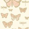 Cole & Son Cole & Son - Butterflies & Dragonflies 103/15066