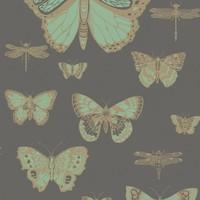Cole & Son - Butterflies & Dragonflies 103/15067
