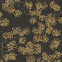 Sandberg - Pine Black