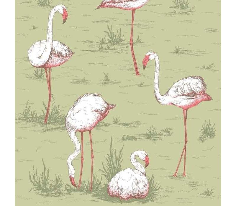 Cole & Son - Flamingos 112/1038