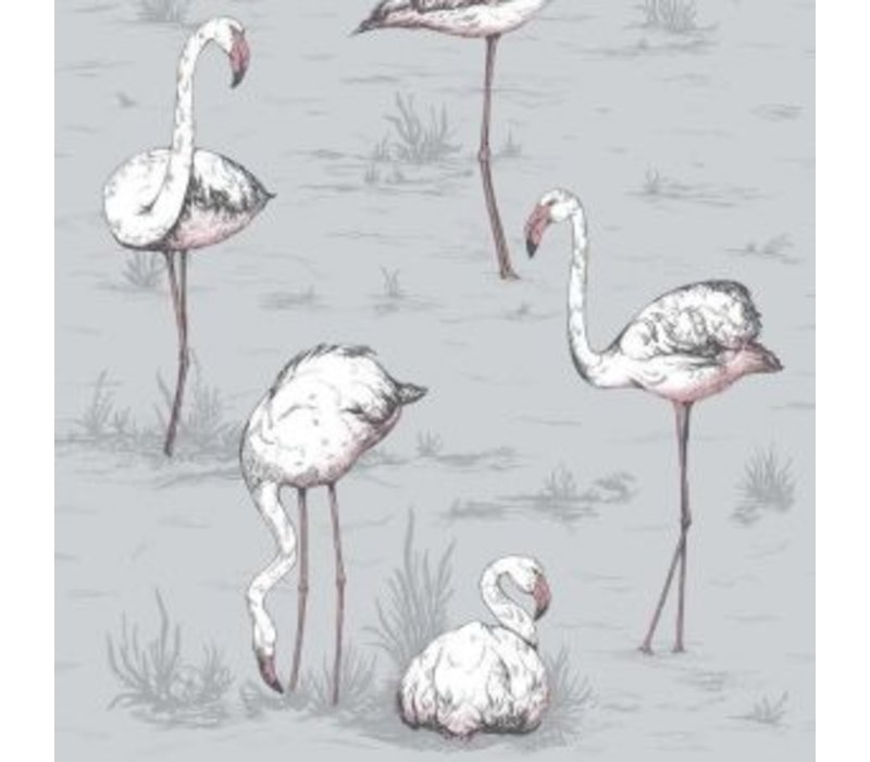 Cole & Son - Flamingos 112/1040
