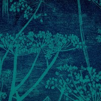 Cole & Son - cow parsley 111/5015