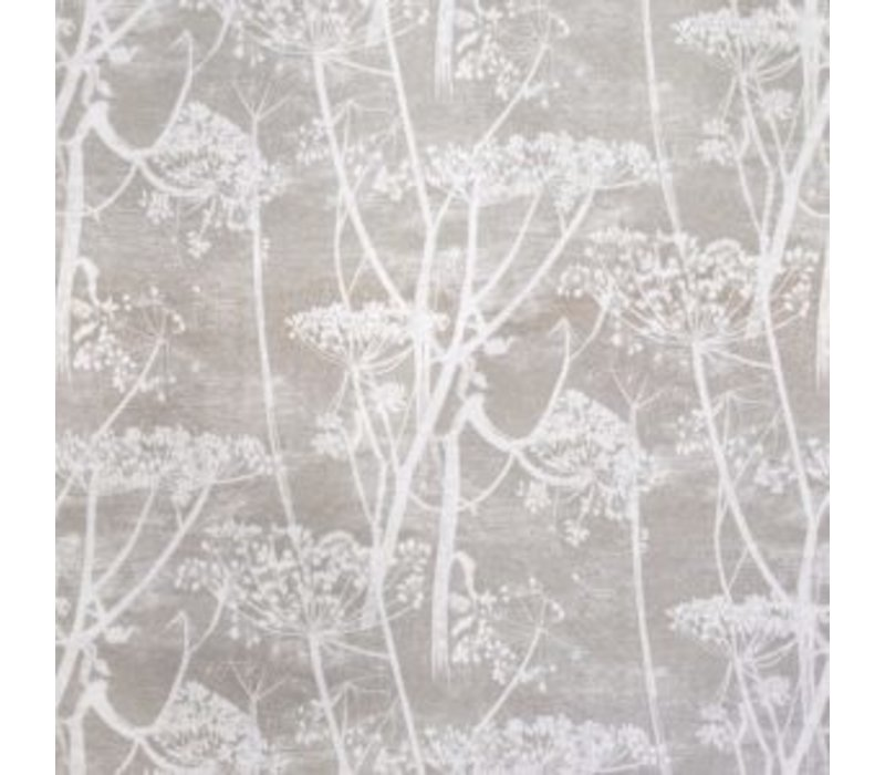 Cole & Son - cow parsley 111/5019