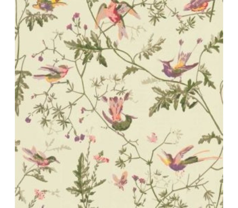 Cole & Son - Hummingbirds 100/14070