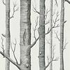 Cole & Son Cole & Son -  woods 69/12147