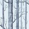 Cole & Son Cole & Son -  woods 69/12150