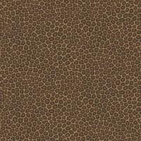Cole & Son - Senzo Spot 109/6028