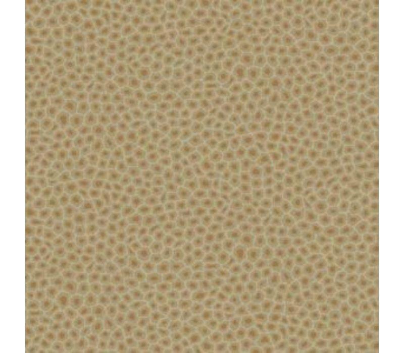 Cole & Son - Senzo Spot 109/6029