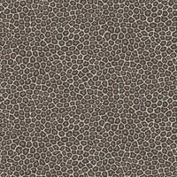 Cole & Son - Senzo Spot 109/6031