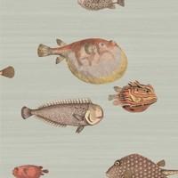 Cole & Son - Acquario 97/10030