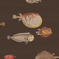 Cole & Son - Acquario 97/10048