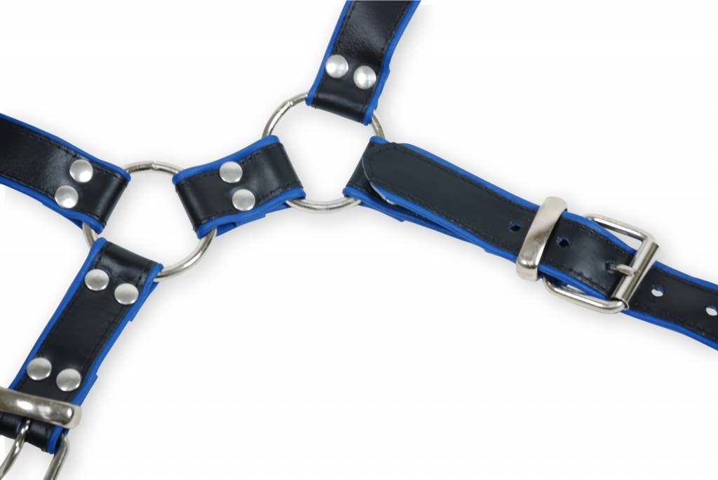 RoB Y-Front Harness black with blue Piping