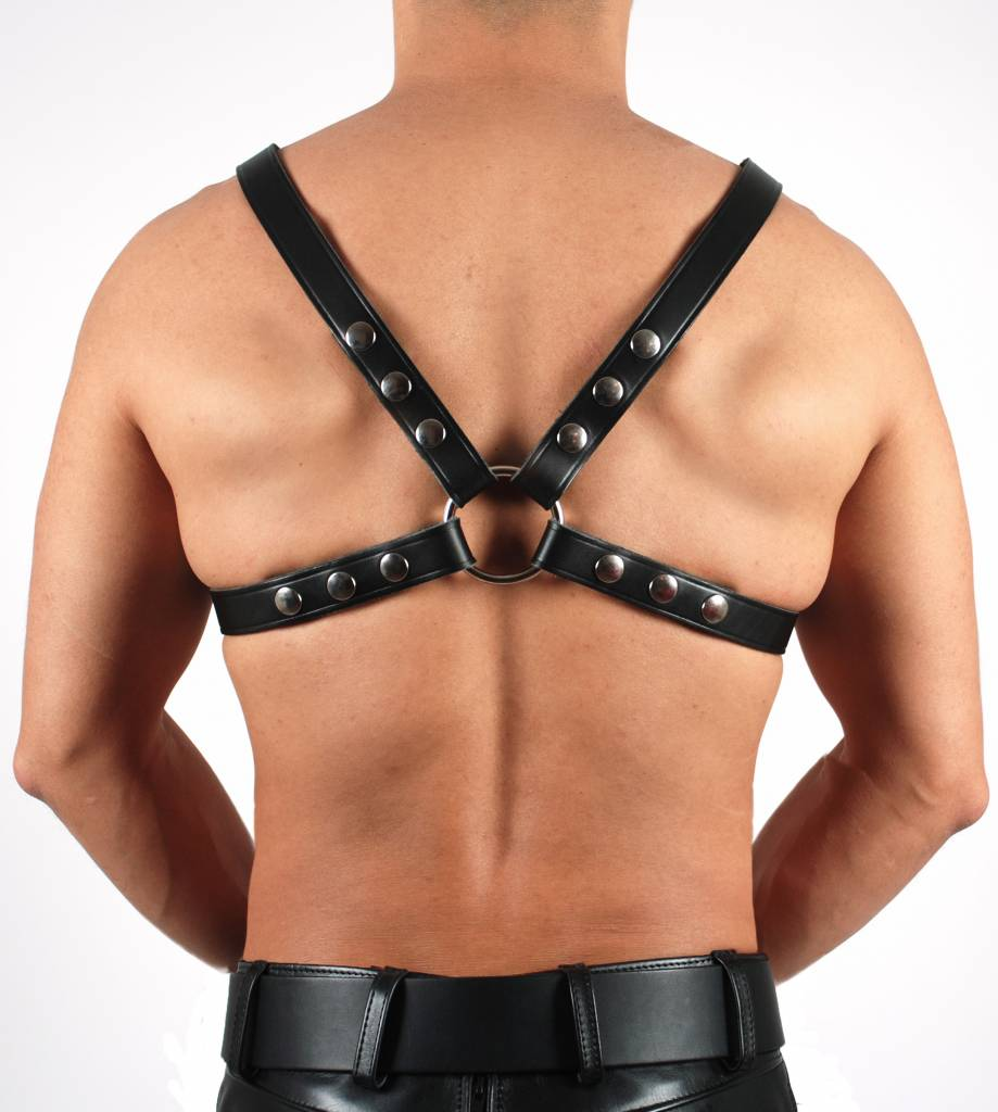 RoB 4-Strap Upper Harness 2.5 cm wide