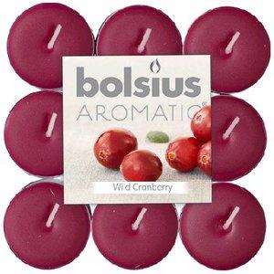 Bolsius Geur Theelichten Wild Cranberry18 stuks in een pak
