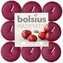 Bolsius kaarsen Geur Theelichten Wild Cranberry18 stuks in een pak 4 branduren