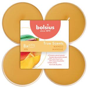 Bolsius True Scents Maxilicht  Geur Mango