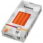 Bolsius Gotische kaarsen mango 12 stuks 245/24 mm
