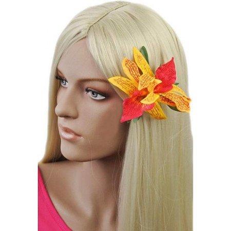 Haarbloem Orchidee Geel Rood