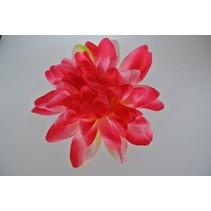 Haarbloem Dahlia Roze