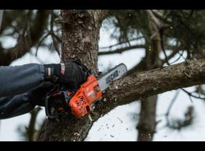 Echo Echo Baumpflegesäge CS 2511 TES
