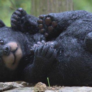 Märchenwald Baby Bär 05136 Lie