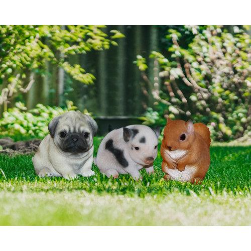Märchenwald Märchenwald Mini Tiere 06078 EIC
