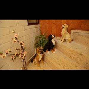 Märchenwald Hund sitzend 04944