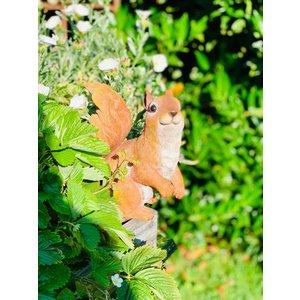 Märchenwald Märchenwald Eichhörnchen 04044 YGX
