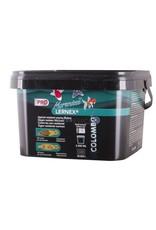 Colombo Morenicol Lernex Pro met Praziquantel & Nitroscanaat (tegen resistentie)