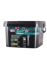 Colombo Morenicol Lernex Pro with Praziquantel & Nitroscanate (against resistance)