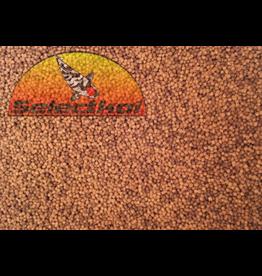 Selectkoi Professional Babykoi Futter Color & Growth