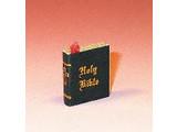 Euromini's XA1582 Bijbel