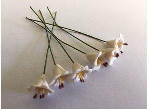 Euromini's EM4727 Witte bloemen