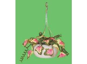 Euromini's Hangpot met planten