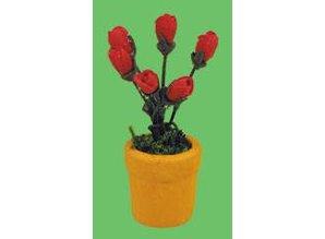 Euromini's Rode tulpen in pot