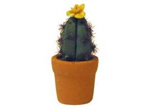 Euromini's Cactus, gele bloem