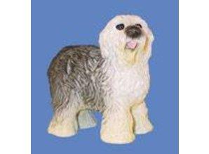Euromini's Gold English Sheepdog