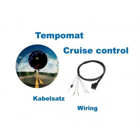 Cruise Control - Harness - VW Passat 3B TDI