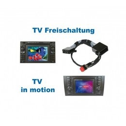 "Video in beweging - ""Plug & Play"" - VW MFD / Audi RNS-D (Navi +)"
