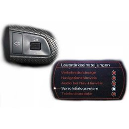 SDS Speech Dialog System - Retrofit - Audi A8 4E