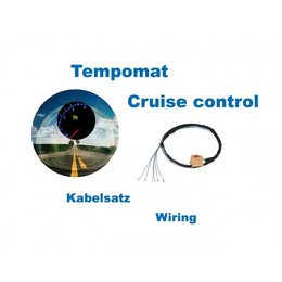 Cruise Control - Harness - VW T5