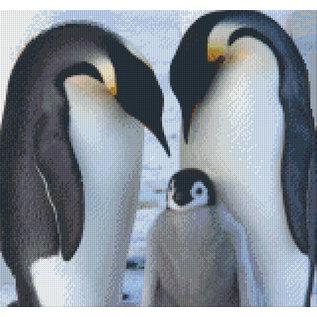 Pixel Hobby Pixelhobby Pinguïns - 12 platen