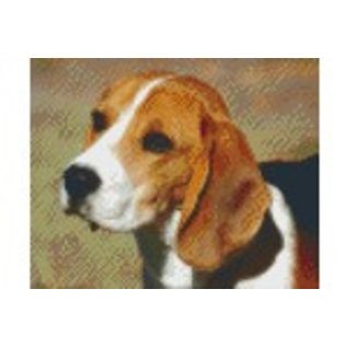 Pixel Hobby Pixelhobby hond - 4 platen
