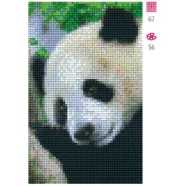 Pixel Hobby Pandabeer - 2 Platten