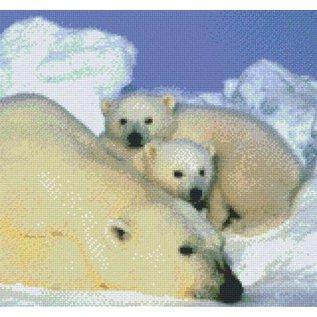 Pixel Hobby Pixelhobby 12 Basisplaten Ijsberen