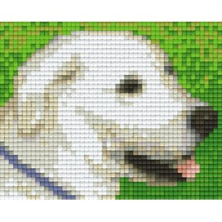 Pixel Hobby Pixelhobby 1 Basisplaat Labrador